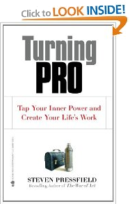 Turning Pro by Stephen Pressfield